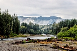 Mist on the Sol Duc River