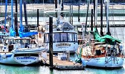 Oak Harbor Yachts
