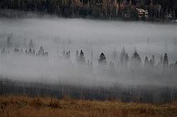 Fog on the Whitefish Range