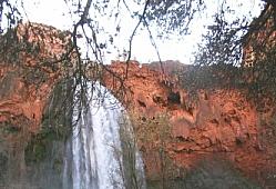 Havasu Falls Portrait