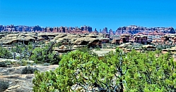 Devil Canyon Spires in the Needles District