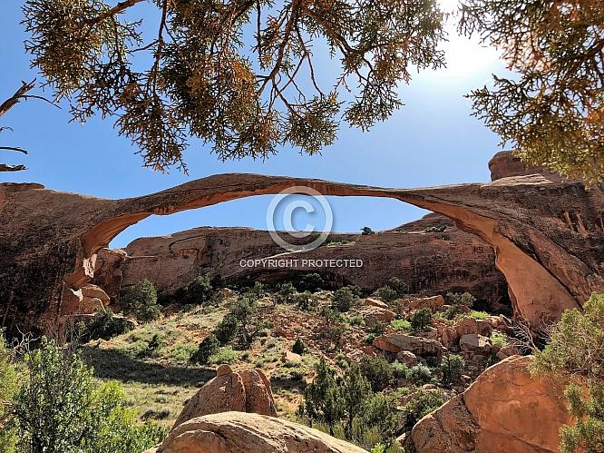 Landscape Arch Magnifique'