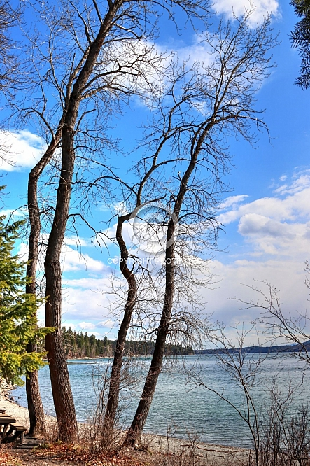 Whitefish Lake Beach