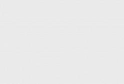 Pahranagat Man Petroglyph